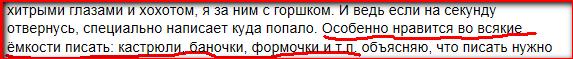 gorshok2
