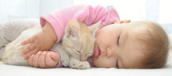 грудничок спит с котенком