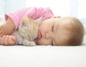 Ребенок спит вобнимку с котенком