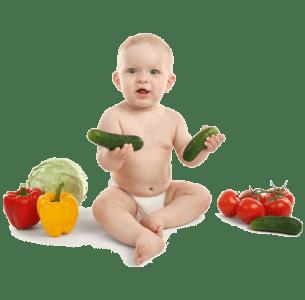 Обложка курса Азбука прикорма