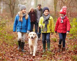59344791, семья, три ребенка, гуляет, улица, парк, собака