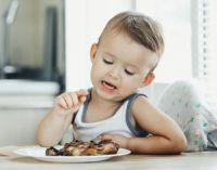 Мальчик перед тарелкой с мясом