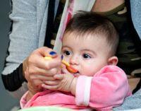 Маленького ребенка кормят с ложки
