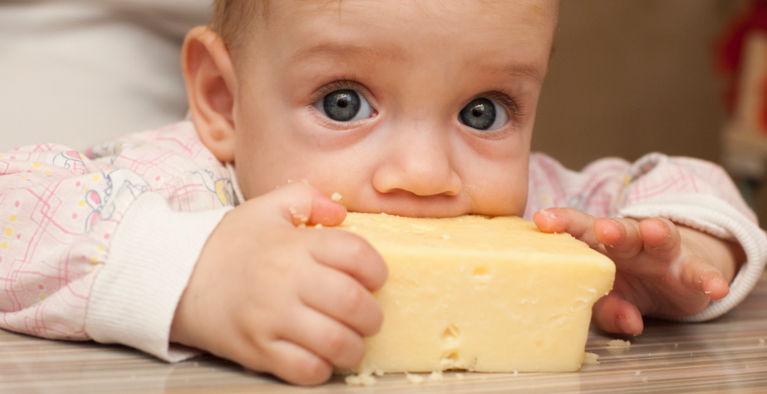 ребенок ест сыр большим куском