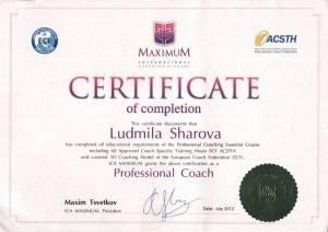 Сертификат академии Максимум