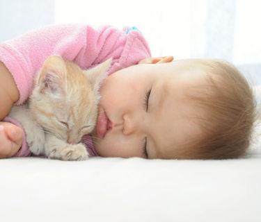 Ребенок спит в 1 год